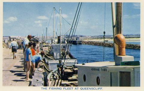 The fishing fleet at Queenscliff, 1964