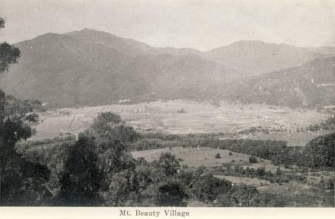 Mount Beauty Village