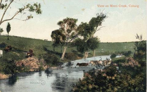 View on Merri Creek, Coburg