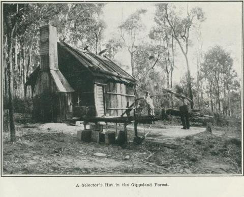 A selector's hut in the Gippsland Forest, 1918