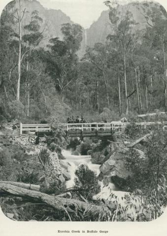 Eurobin Creek in Buffalo Gorge, 1918