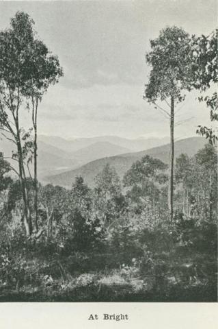 At Bright, 1918