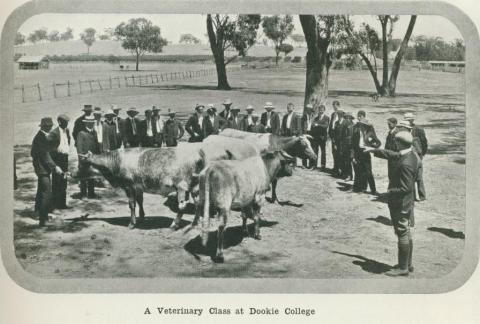 A veterinary class at Dookie College, 1918