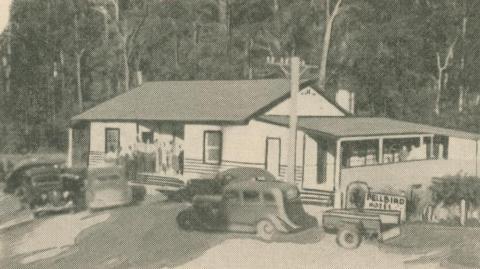 Bellbird Hotel, 1947-48
