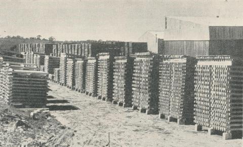 Dartmoor Pine Mills, 1960