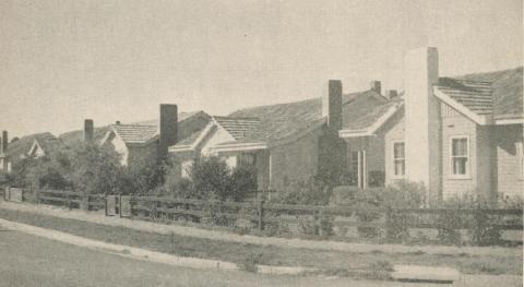 Housing Commission Estate, Hamilton, 1960