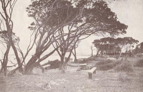 Dromana, 1929
