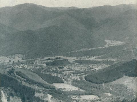 Bright township, from Mount Buffalo, 1951