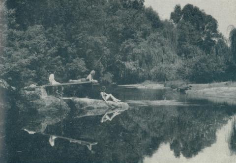 Nug Nug Creek swimming hole, Myrtleford, 1951