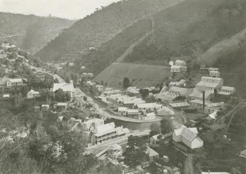 Junction of Right and Left-hand Branches, Walhalla, c1910