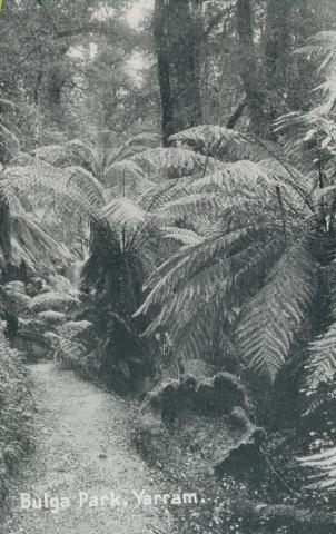 Bulga Park, Yarram, 1947