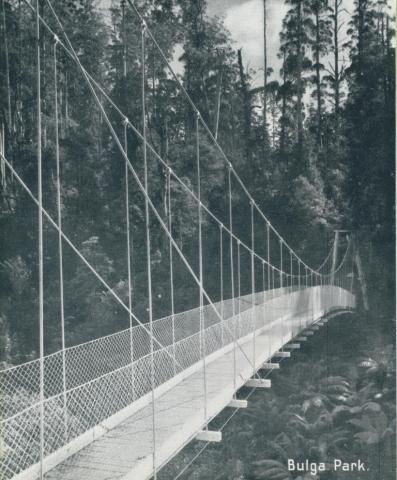 Suspension Bridge, Bulga Park, Yarram, 1947