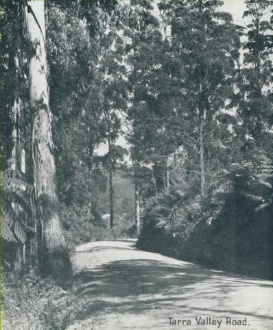 Tarra Valley Road, Yarram, 1947