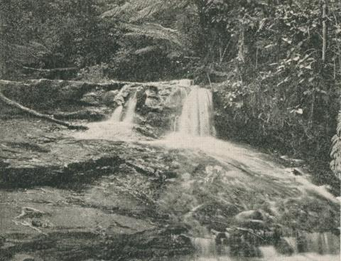 Sheoak Creek, Lorne, 1910