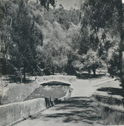 Daylesford Central Springs, 1959