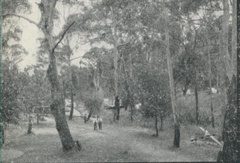 Bushlands, Hepburn Springs, 1959