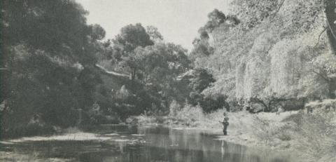 Loddon River, Castlemaine, 1959