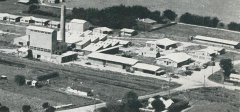 British United milk products factory, Toora, 1955