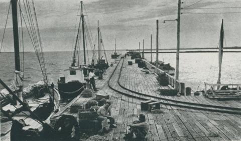 Part of the fishing fleet, Port Welshpool, 1955
