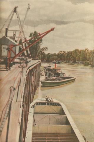 The old wharves at Echuca, 1950