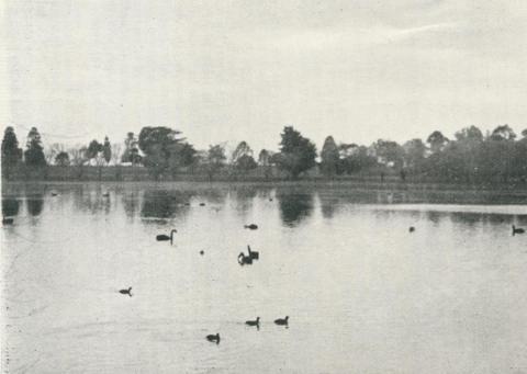 Lake Guthridge, Sale, 1938