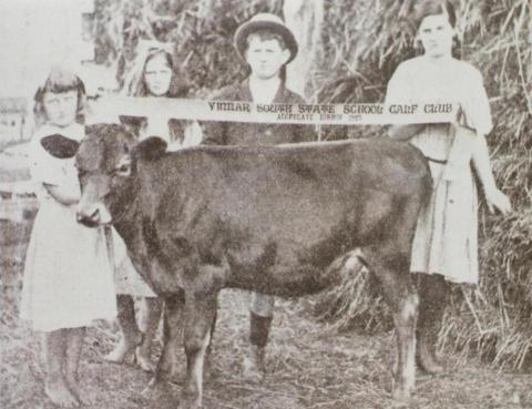 Children with prize calf, Yinnar South, 1923