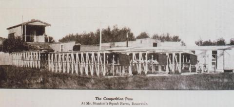 Mr Stanton's squab farm, Reservoir, 1929
