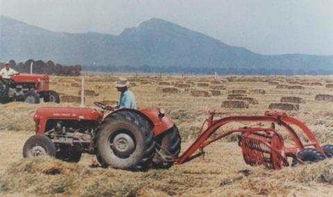 Haymaking, Willaura, 1965