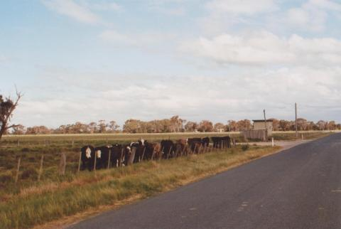 Cattle and Telephone Exchange, Bamawn Extension, 2010