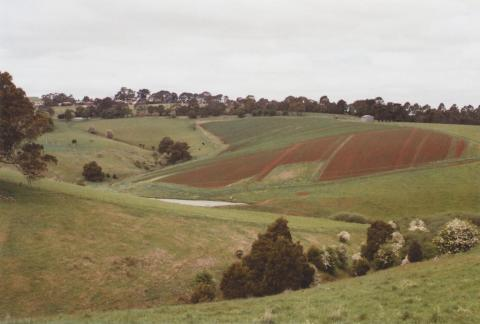 Ploughed fields, Mirboo North, 2012