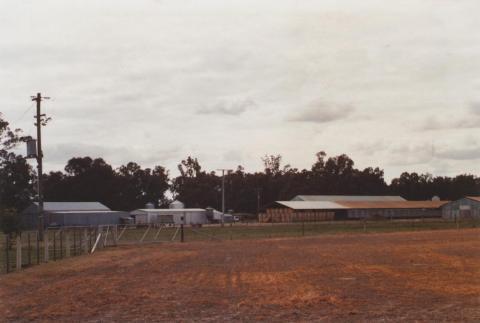 Poultry Farm, Tamleugh, 2012