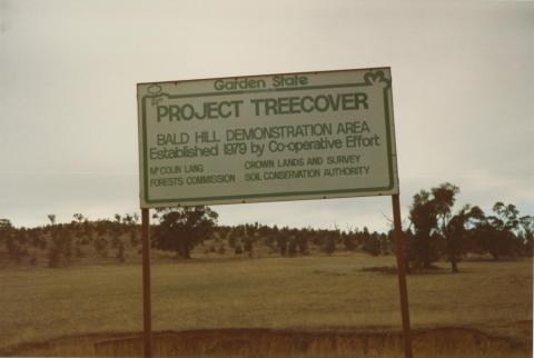 Project Treecover, Bald Hill demonstration area, near Charlton, 1980