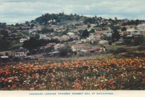 Panorama looking towards Wombat Hill at Daylesford, 1957