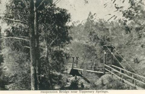 Suspension bridge near Tipperary Springs, Daylesford