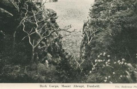 Back Gorge, Mount Abrupt, Dunkeld, 1952