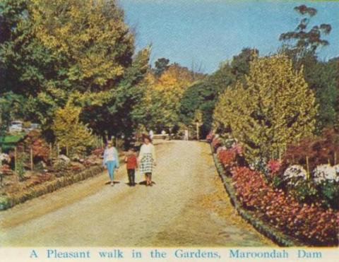 A pleasant walk in the Gardens, Maroondah Dam, Healesville