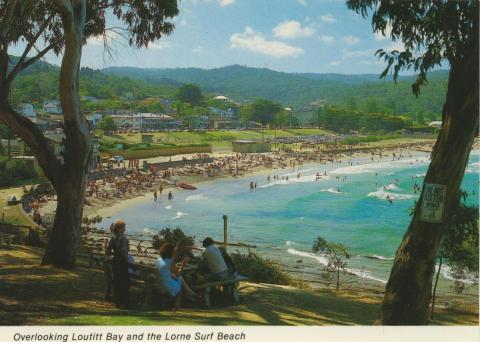 Overlooking Loutitt Bay and Lorne Surf Beach
