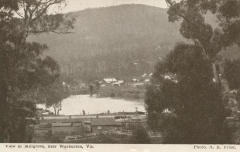 View of Millgrove, near Warburton