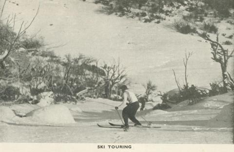 Ski Touring, Mount Buffalo, 1953