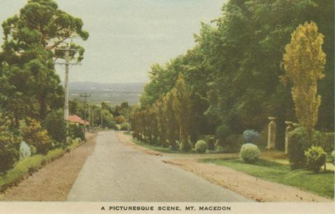 A picturesque scene, Mount Macedon, 1955