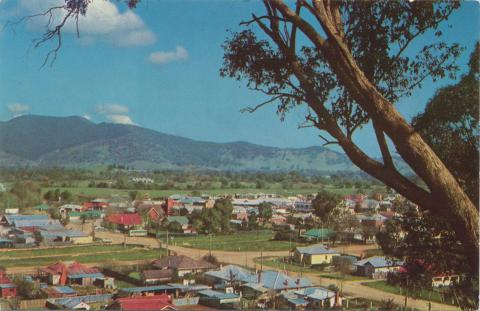 Myrtleford from Reform Hill