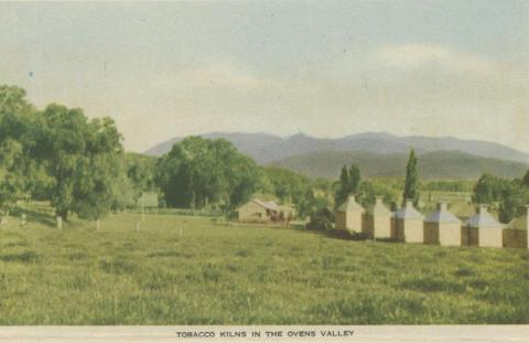 Tobacco Kilns in the Ovens Valley, 1953