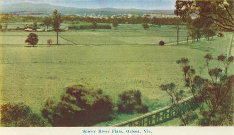Snowy River Flats, Orbost, 1964