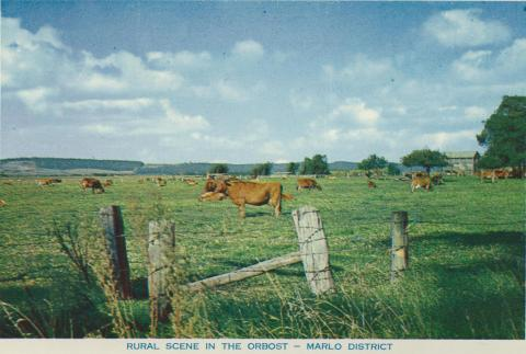 Rural scene in the Orbost - Marlo District