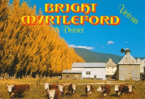 Golden Autumn, Myrtleford