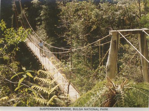 Suspension Bridge, Bulga National Park