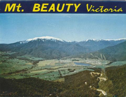 Mt Beauty Township and Mt Bogong from Power Line Lookout