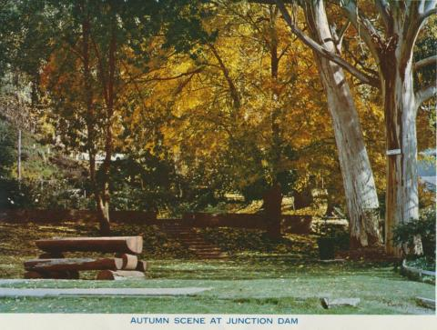 Autumn Scene at Junction Dam