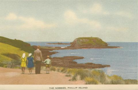 The Nobbies, Phillip Island