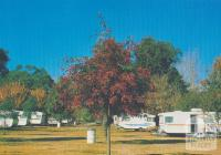 The picturesque Tawonga Caravan Park